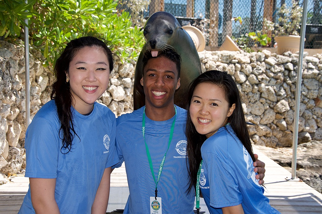 Dolphin Encounters Trainer for a Day