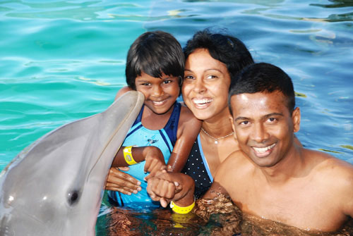 Dolphin Encounters Dolphin Encounter Tour