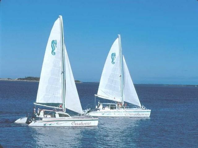 The Seahorse catamarans