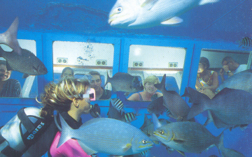 Explore the Sea Gardens Marine Park in air-conditioned comfort